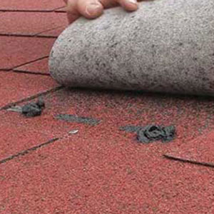 Application colle shingle
